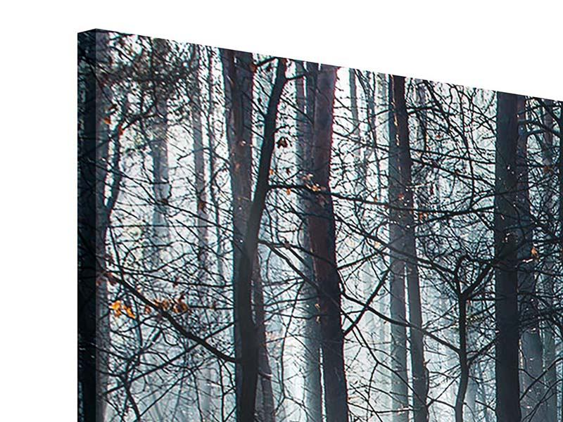 Panoramic Acrylic Print Forest In The Light Beam