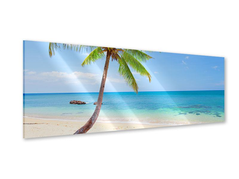 Panoramic Acrylic Print The Own Island