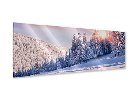 Panoramic Acrylic Print Winter Landscape