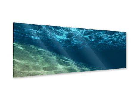 Panoramic Acrylic Print Under The Water