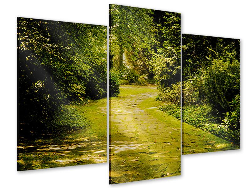 Modern 3 Piece Acrylic Print Moss-Covered Path