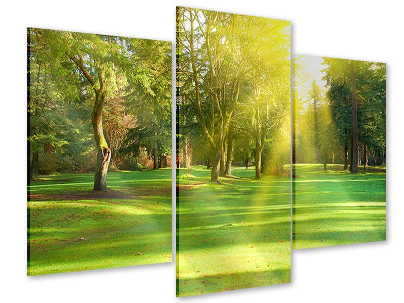 Modern 3 Piece Acrylic Print In The Park
