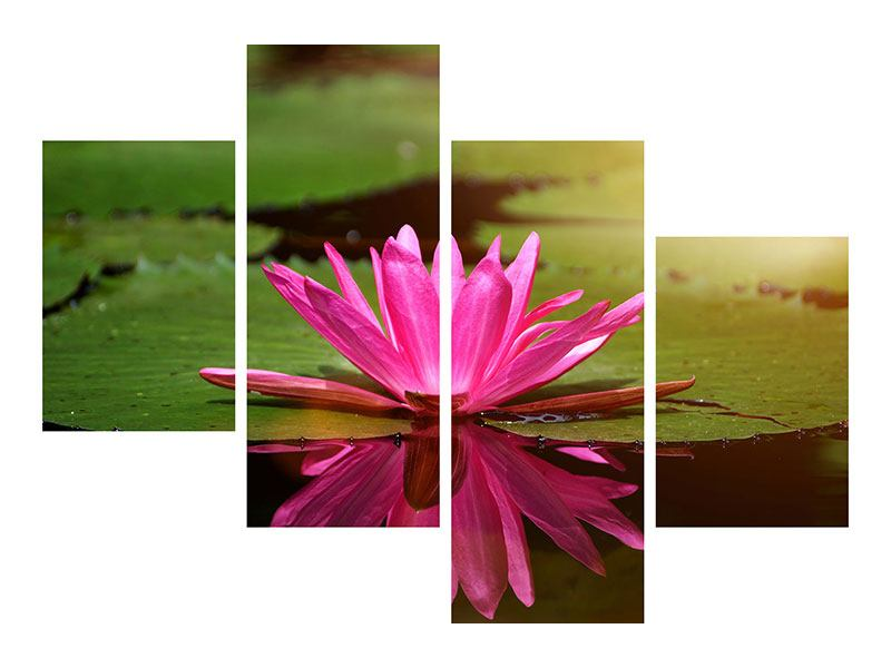 Modern 4 Piece Acrylic Print Lotus In Water