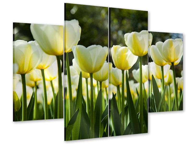 4 Piece Acrylic Print Tulips At Sunset