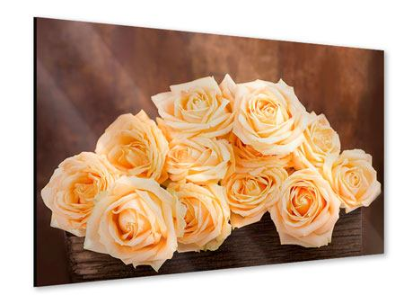 Acrylic Print Rose Time
