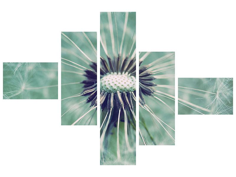 Modern 5 Piece Acrylic Print Close Up Dandelion