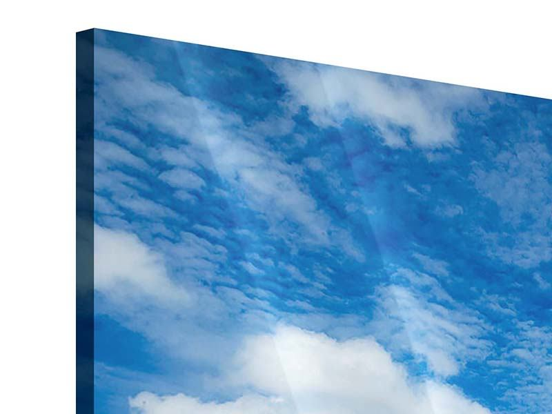 9 Piece Acrylic Print Photo Wallaper High Above The Clouds