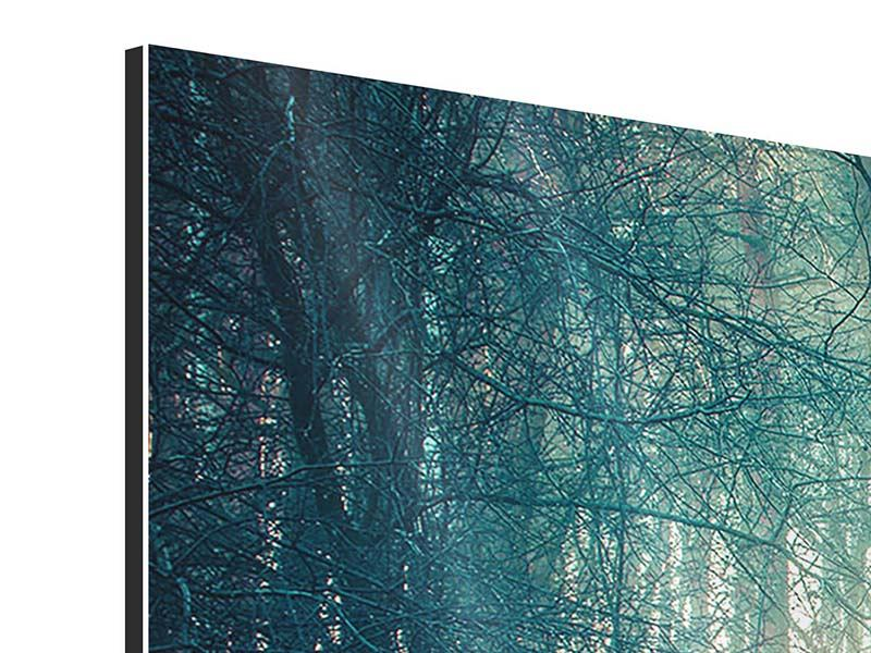 Panoramic Aluminium Print Pinewood