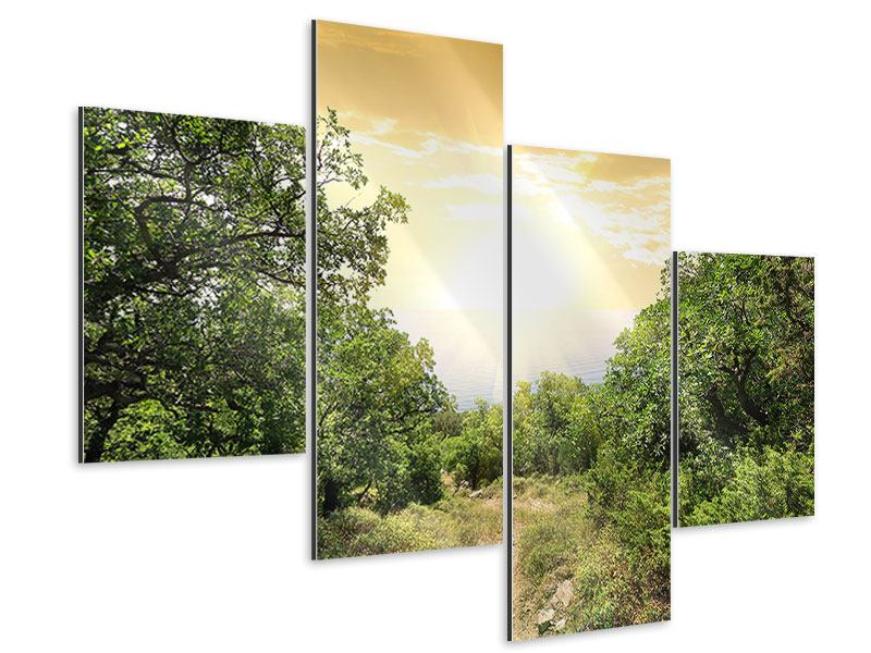 Modern 4 Piece Aluminium Print At The End Of The forest