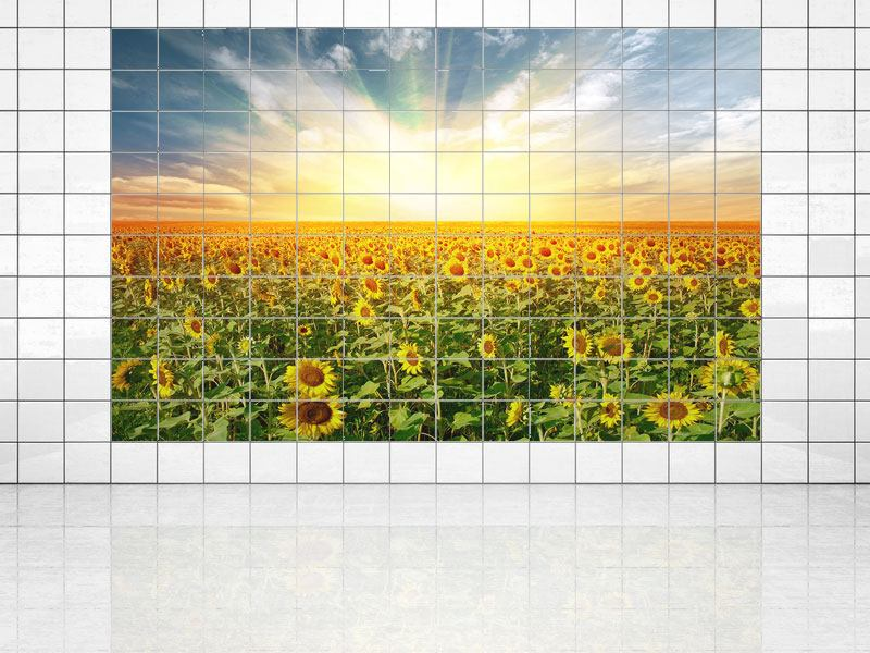 Impression pour Carrelage Un champ plein de tournesols