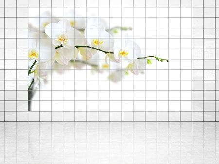 Tile Print White Orchids