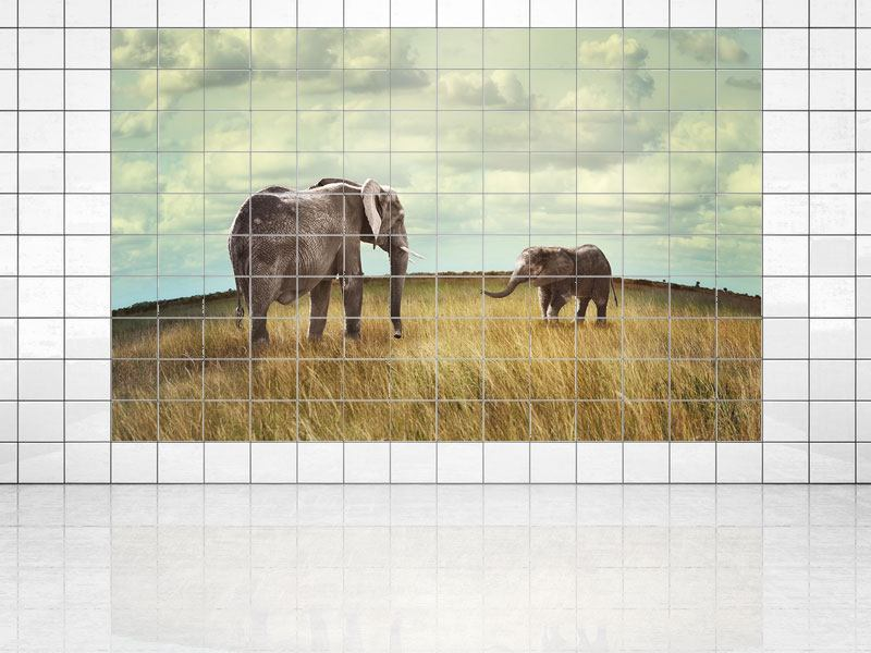 Tile Print Elephant And Feng Shui