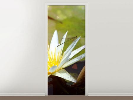 Door Mural Waterlily