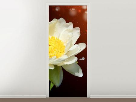 Door Mural Water Lily In The Moonlight