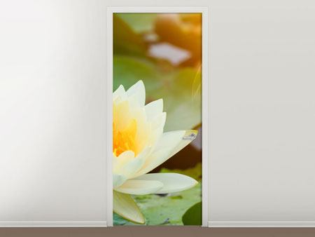 Door Mural Romantic Waterlily