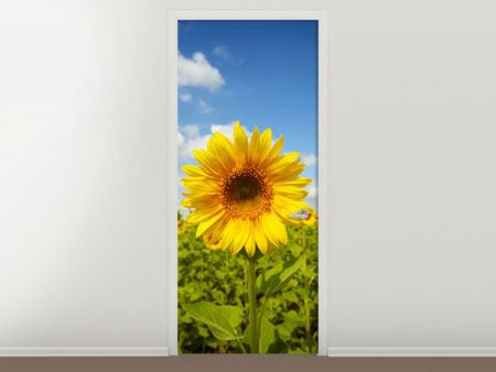 Door Mural Summer Sunflowers