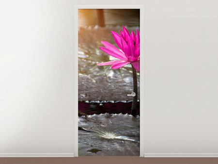Door Mural Water Lily In The Morning Dew