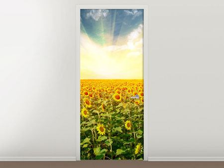 Door Mural A Field Full Of Sunflowers