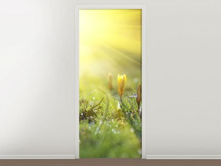 Door Mural Flowery Meadow