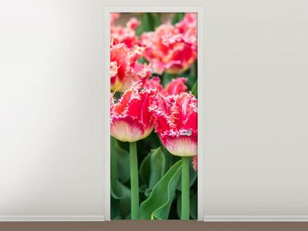 Door Mural The Tulips Meadow