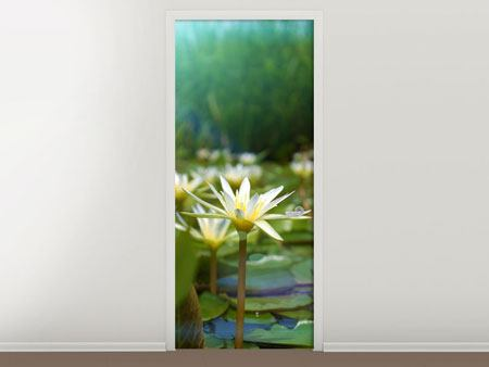 Door Mural Waterlily Pond