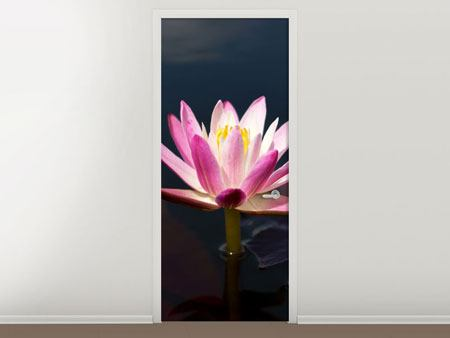 Door Mural Water Lily At Dusk