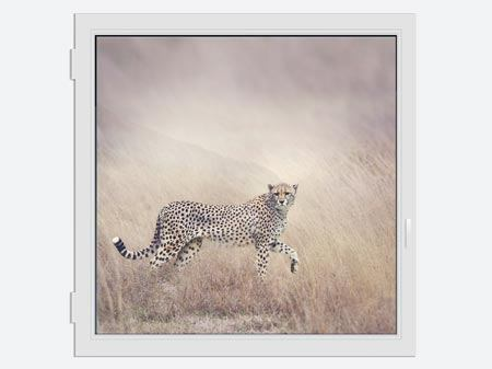 Window Print Cheetah