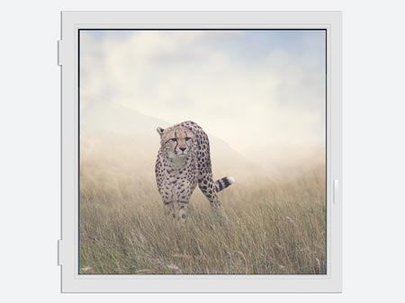 Window Print The Cheetah
