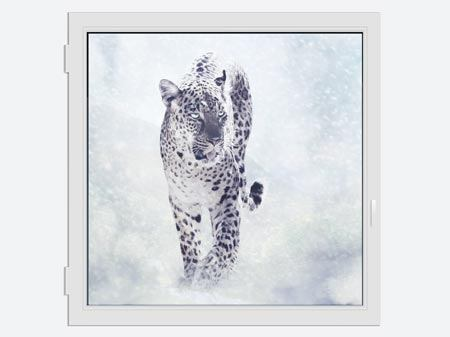 Window Print Photo Wallaper The Leopard