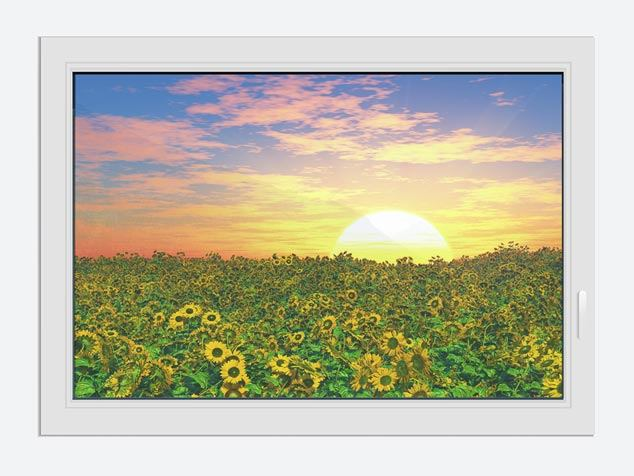 Window Print Flowers Panorama At Sunset