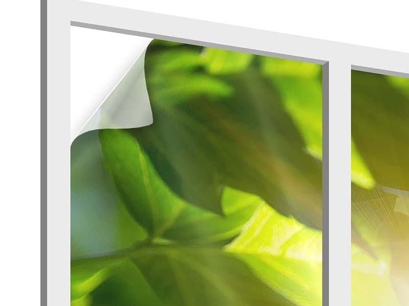 Window Print Go Green