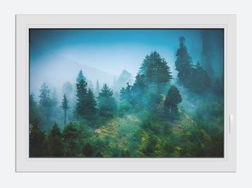 Window Print Mysterious Forest