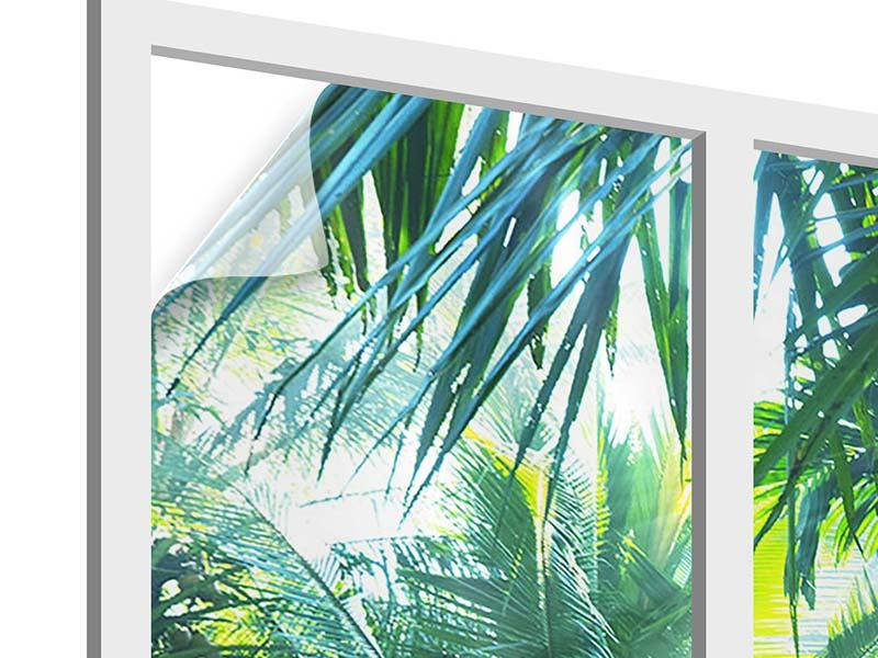Window Print In Tropical Forest