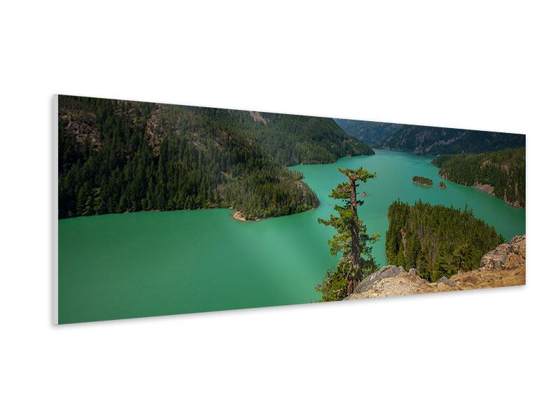 Panoramic Forex Print Diablo Lake