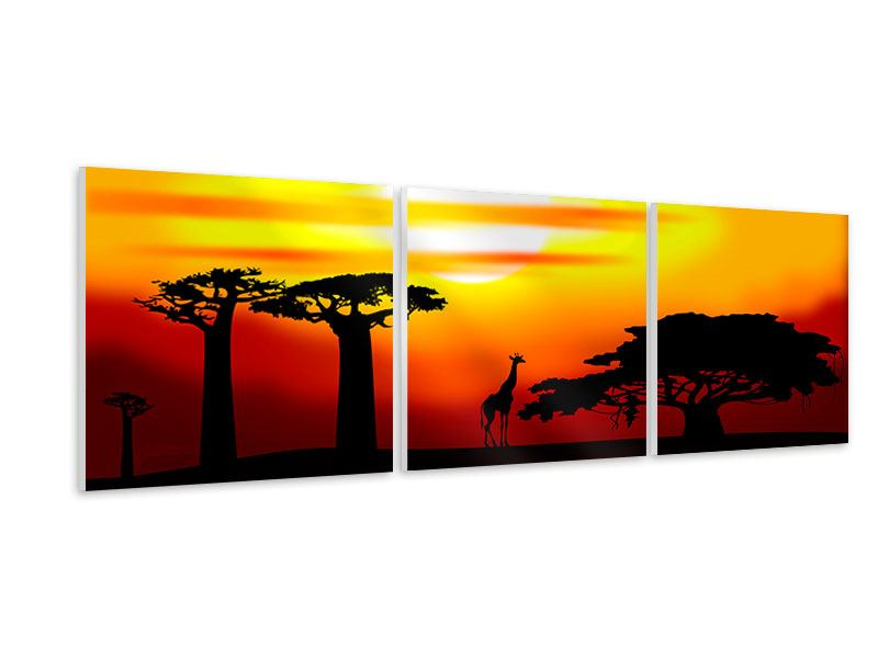 Panoramic 3 Piece Forex Print Fascination Africa