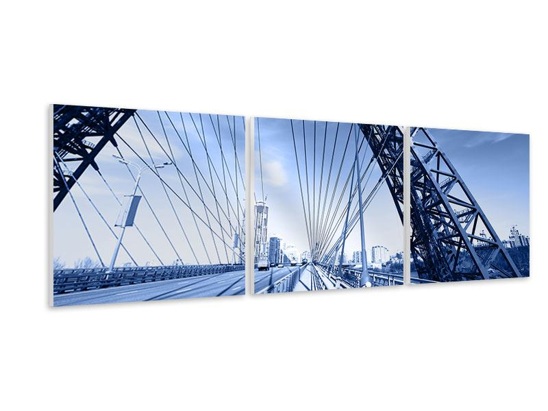 Panoramic 3 Piece Forex Print Zhivopisny Bridge