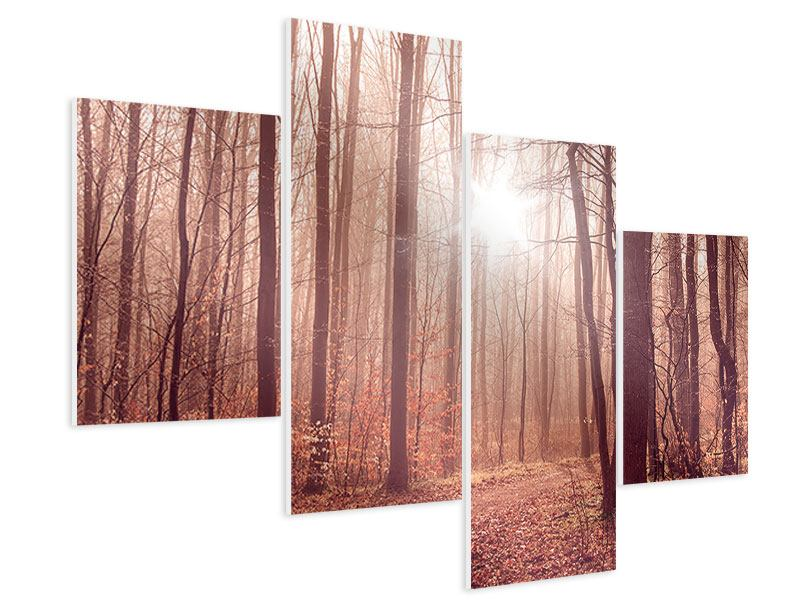 Modern 4 Piece Forex Print Sunset In Autumn Forest