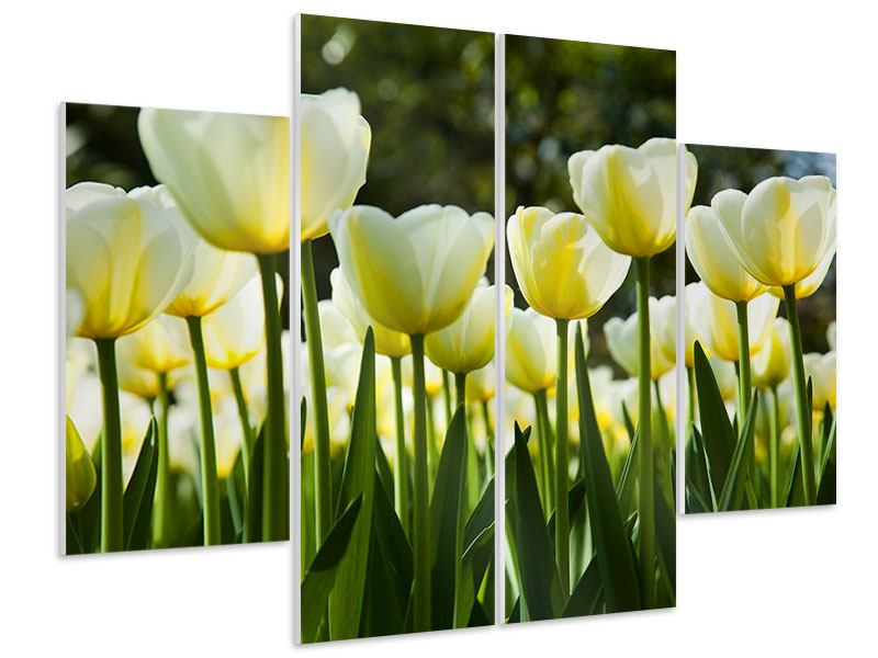 4 Piece Forex Print Tulips At Sunset