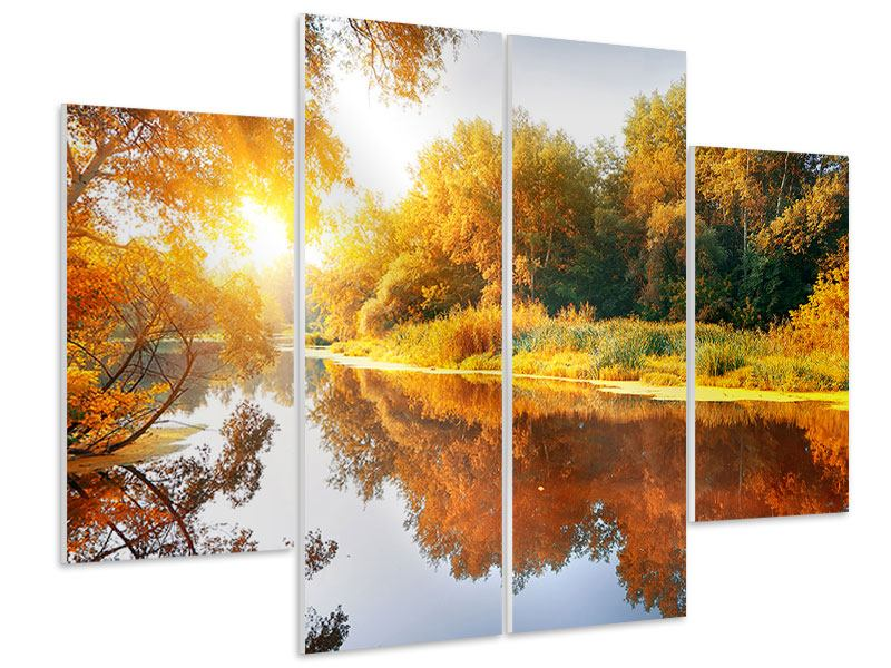 4 Piece Forex Print Forest Reflection In Water
