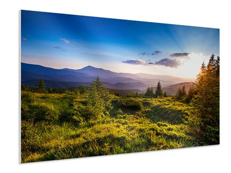 Forex Print Peaceful Landscape