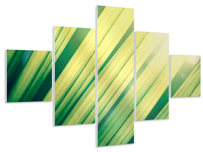 5 Piece Forex Print Illuminated Palm Leaf
