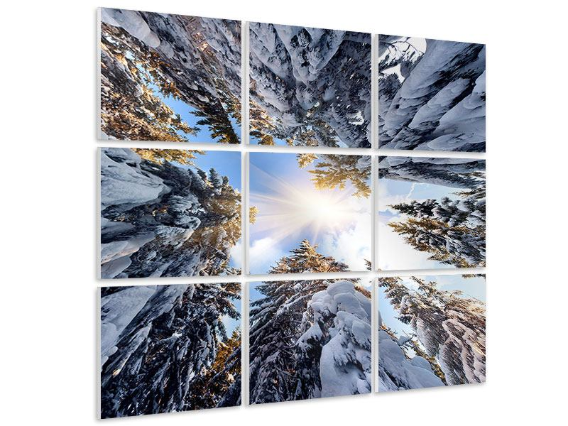 9 Piece Forex Print Snow-Covered Fir Tree Tops In The Sun