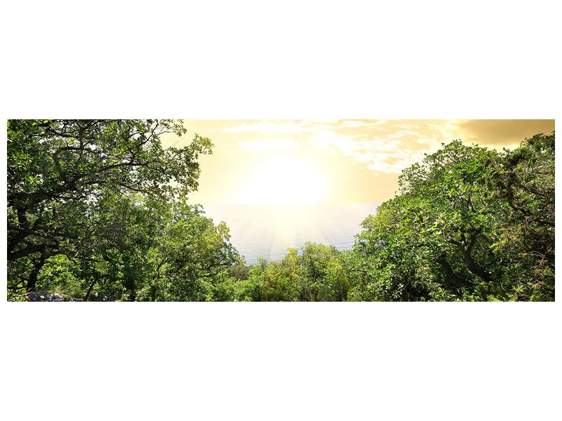 Panoramic Self-Adhesive Poster At The End Of The forest