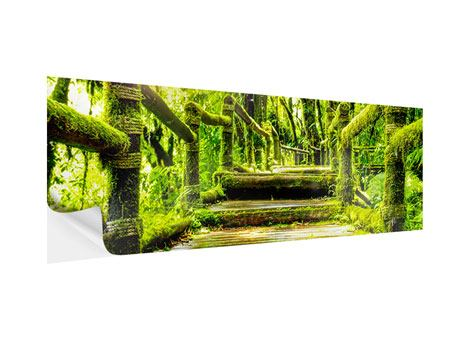 Panoramic Self-Adhesive Poster Moss