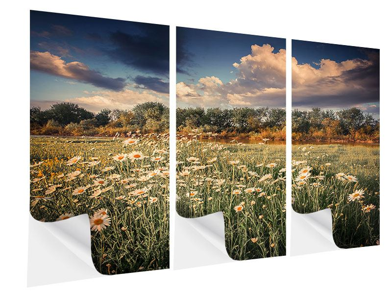 3 Piece Self-Adhesive Poster The Ox On The River