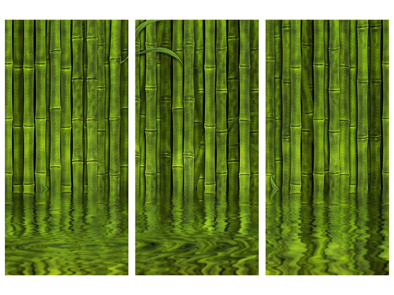 3 Piece Self-Adhesive Poster Water Reflections Bamboo