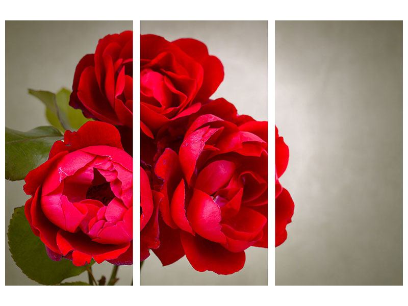 Posters adhesif en 3 parties Trois roses rouges