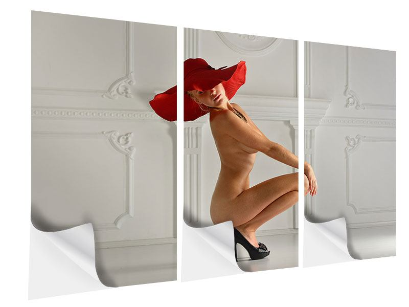 3 Piece Self-Adhesive Poster Nude Diva