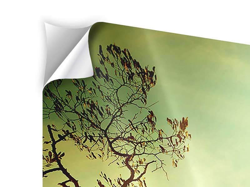 3 Piece Self-Adhesive Poster Autumn Trees