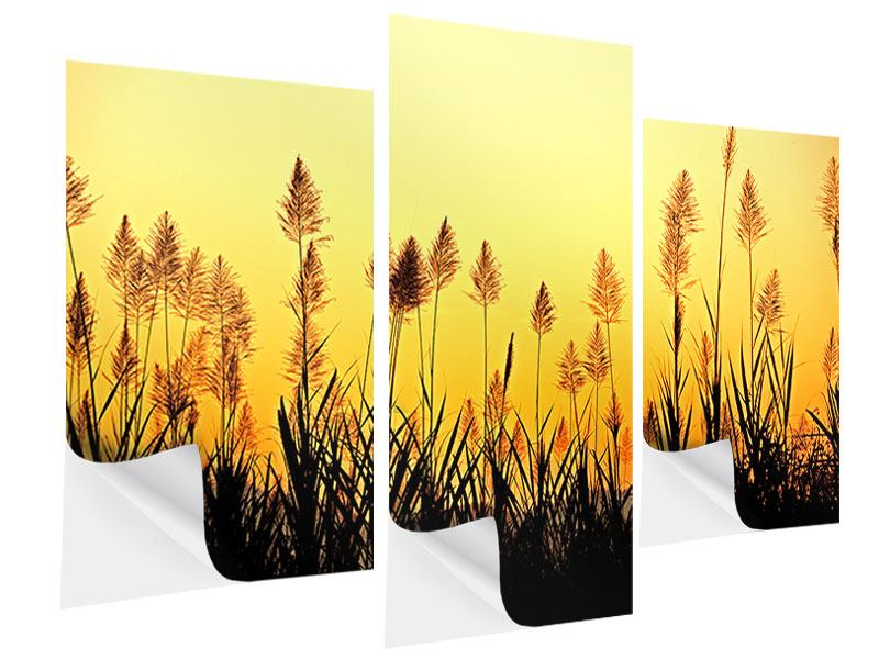 Modern 3 Piece Self-Adhesive Poster The Flowers Of The Field